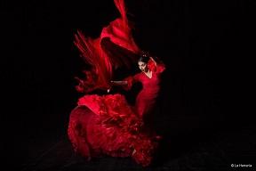 Flamenco in Barcelona | Visit Barcelona With Family