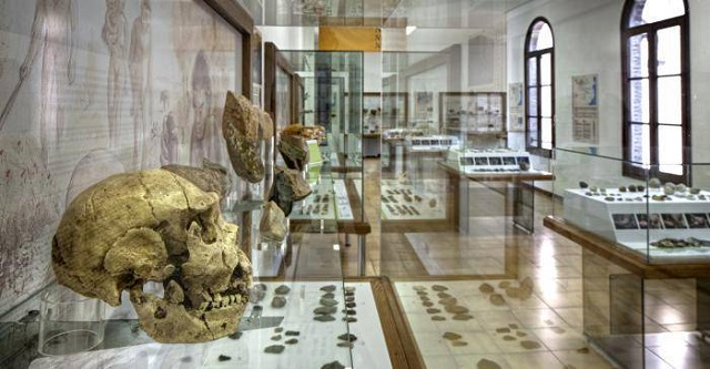 Archaeological Museum of Barcelona Prehistoric Exposition | Visit Barcelona With Family