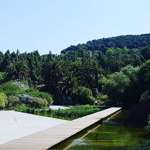 Botanic Garden of Barcelona